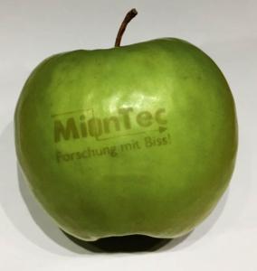 Akademie Forschungsaktivitäten Apfel